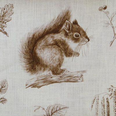 LSSquirrelS