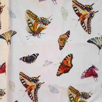 Schmetterlinge Stoff in 280cm Zazu